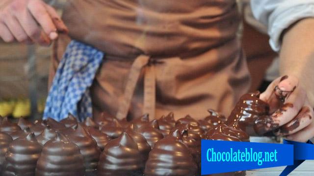 Berkunjung Ke Kebun Coklat 335jt