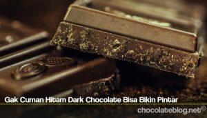 Gak Cuman Hitam Dark Chocolate Bisa Bikin Pintar