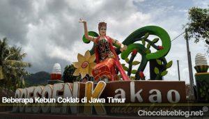 Beberapa Kebun Coklat di Jawa Timur